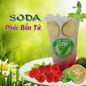 soda-phúc-bồn-tử-an-an